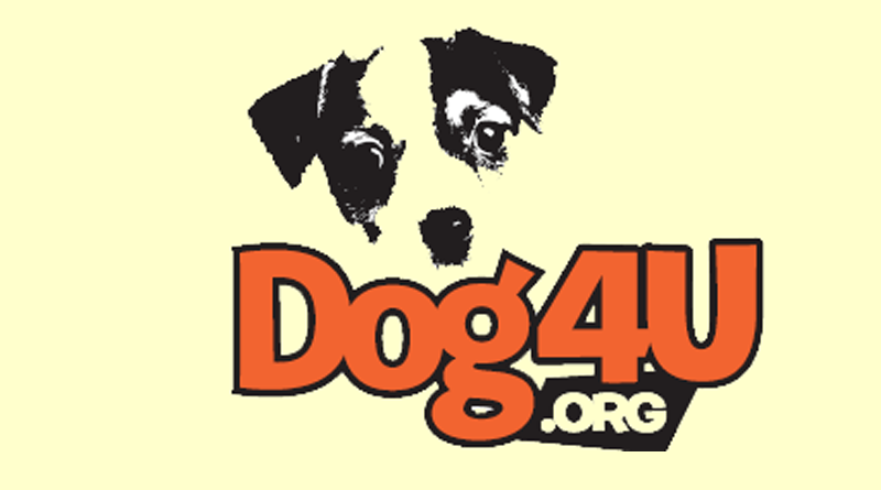 Dog4u Receives 501[c]3 Status